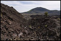 Broken Top flanks and Big Cinder Butte. Craters of the Moon National Monument and Preserve, Idaho, USA ( )