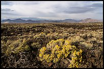 Sagebrush and Pioneer Mountains. Craters of the Moon National Monument and Preserve, Idaho, USA ( color)