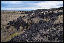 Edge of Laidlaw Kipuka from Lava Point. Craters of the Moon National Monument and Preserve, Idaho, USA ( color)