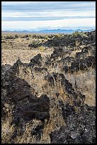 Grassy lava flow at Lava Point. Craters of the Moon National Monument and Preserve, Idaho, USA ( color)