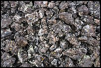 Close up of lava rocks with lichen. Craters of the Moon National Monument and Preserve, Idaho, USA ( color)