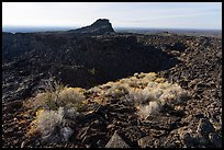 Rabbitbrush and crater, Pilar Butte. Craters of the Moon National Monument and Preserve, Idaho, USA ( )