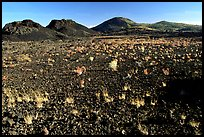 Lava field, Craters of the Moon National Monument. Idaho, USA ( color)