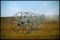 Irrigation wheels spraying water. Idaho, USA (color)