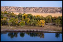 Missouri River, cottonwoods and badlands. Upper Missouri River Breaks National Monument, Montana, USA ( color)