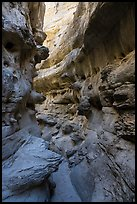 Twisted passages in Neat Coulee slot canyon. Upper Missouri River Breaks National Monument, Montana, USA ( color)
