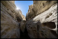 Sandstone walls of Neat Coulee slot canyon and sun. Upper Missouri River Breaks National Monument, Montana, USA ( color)