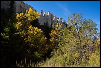 Trees in autumn foliage below sandstone pinnacles. Upper Missouri River Breaks National Monument, Montana, USA ( color)