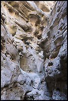 Knobs and holes in canyon walls, Neat Coulee. Upper Missouri River Breaks National Monument, Montana, USA ( color)