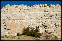 Sandstone wall. Upper Missouri River Breaks National Monument, Montana, USA ( color)
