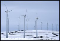 Electricity-generating windmills. Oregon, USA ( color)