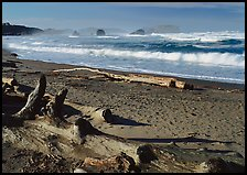 Logs on beach and surf near Bandon. Bandon, Oregon, USA (color)