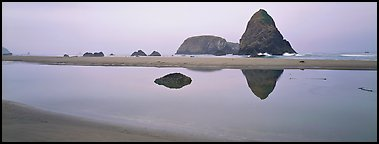 Sea stacks reflected in tidepool. Oregon, USA (Panoramic color)