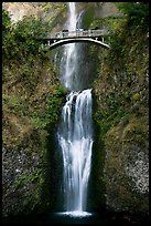 Lower Multnomah Falls and Benson Bridge. Columbia River Gorge, Oregon, USA (color)