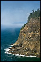 Seacliff near Cap Meares. Oregon, USA (color)