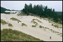 Dunes and hikers, Oregon Dunes National Recreation Area. Oregon, USA