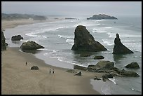 Beach and rock needles. Bandon, Oregon, USA ( color)