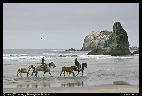 Women ridding horses on beach. Bandon, Oregon, USA