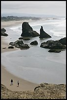 Beach and seastacks at Face Rock. Bandon, Oregon, USA ( color)