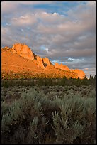 Sagebrush and ridge at sunset. Smith Rock State Park, Oregon, USA ( color)