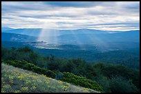 God's rays over Keene Creek Ridge. Cascade Siskiyou National Monument, Oregon, USA ( )