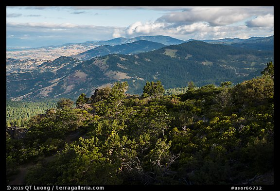 Forested ridges from Hobart Bluff. Cascade Siskiyou National Monument, Oregon, USA (color)
