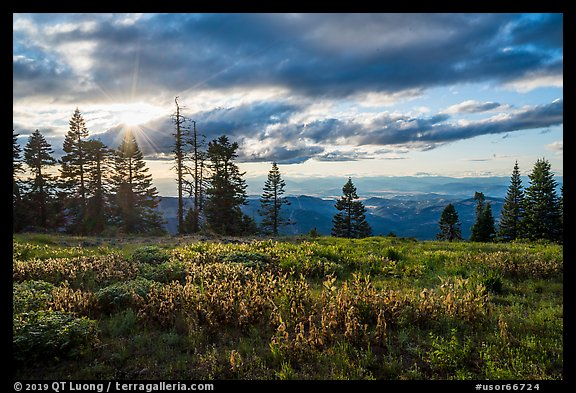 Meadow, sun, and view over mountains near Grizzly Peak. Cascade Siskiyou National Monument, Oregon, USA (color)