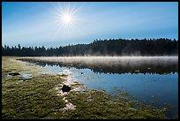 Sun and fog rising of Hyatt Lake. Cascade Siskiyou National Monument, Oregon, USA ( )