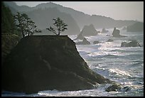 Coastline with rocks and seastacks, Samuel Boardman State Park. Oregon, USA ( color)