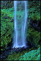 Diaphane waterfall, North Umpqua watershed. Oregon, USA ( color)