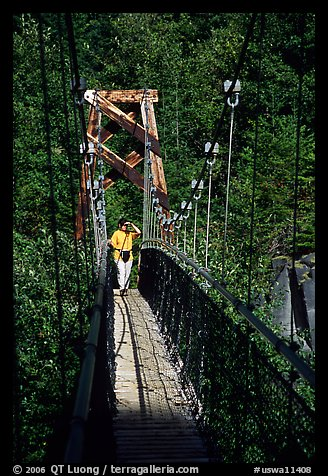 Woman hiking on suspension bridge, Lava Canyon. Mount St Helens National Volcanic Monument, Washington (color)