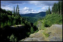 Forest and gorge, Lava Canyon. Mount St Helens National Volcanic Monument, Washington ( color)