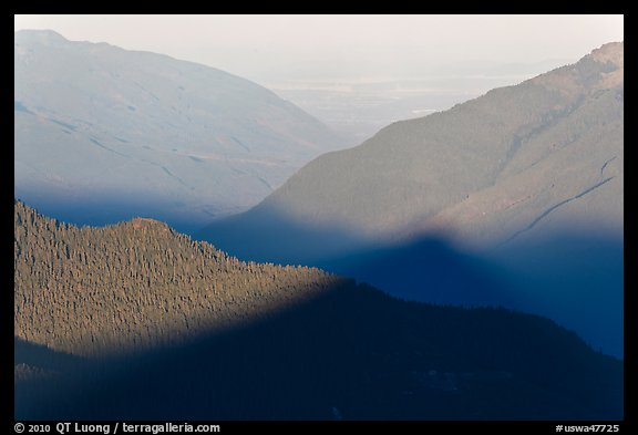 Fog on bottom of Cascade River Valley in early morning. Washington (color)