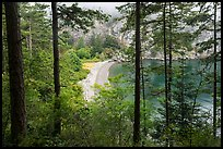 Beach through forest from above, Watmough Bay, Lopez Island. San Juan Islands National Monument, Washington ( color)