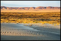Sand dunes and Saddle Mountains, Hanford Reach National Monument. Washington ( color)