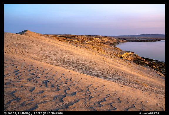 Sand ripples and Columbia River at sunset, Hanford Reach National Monument. Washington (color)