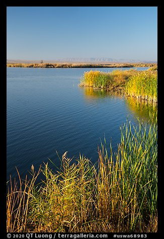Wahluke Ponds, Hanford Reach National Monument. Washington (color)