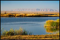 Wahluke Ponds and distant Rattlesnake Mountain, Hanford Reach National Monument. Washington ( color)