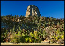 Devil's Tower rising above forested slope. Wyoming, USA