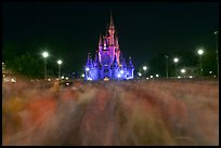 Blurry crowds and Cinderella Castle, Walt Disney World. Orlando, Florida, USA ( color)