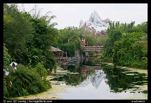 Tropical forest and Everest mountain, Animal Kingdom Theme Park. Orlando, Florida, USA (color)