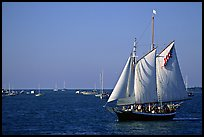 Old sailboat. Key West, Florida, USA