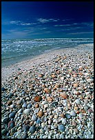 Pictures of Sanibel Island