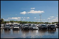 Cars in flooded lot, Matheson Hammock Park. Coral Gables, Florida, USA ( color)