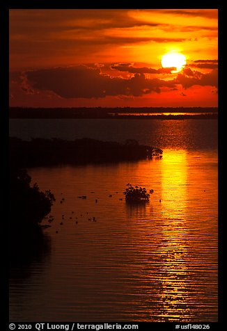 Sunrise over Atlantic shore, Sugarloaf Key. The Keys, Florida, USA