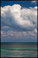 Atlantic ocean views with afternoon clouds, Matacumbe Key. The Keys, Florida, USA ( color)