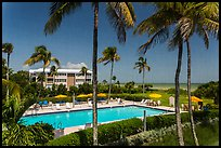 Beachside resort seen through screen, Sanibel Island. Florida, USA ( color)