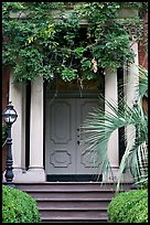 Doorway with luxuriant vegetation. Savannah, Georgia, USA ( color)
