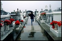 Rain in Saint Louis cemetery. New Orleans, Louisiana, USA ( color)