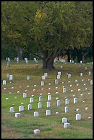 Cemetery, Vicksburg National Military Park. Vicksburg, Mississippi, USA (color)